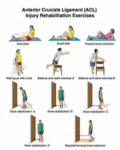 Anterior Cruciate Ligament  Acl  Injury Exercises For Knee