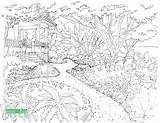Drawing Sketch Garden Flower Coloring Bed Sketches Front Taken Paintingvalley sketch template