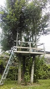 Construire Sa Cabane : construire une maison dans les arbres stunning cabane en bois with construire une maison dans ~ Melissatoandfro.com Idées de Décoration