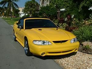 Ford Mustang Photo Gallery: 1998 Cobra Convertible | Shnack.com