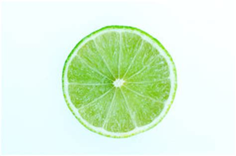 cuisine r馮ime free stock photos rgbstock free stock images slice of lime bewiki january 30 2010 102