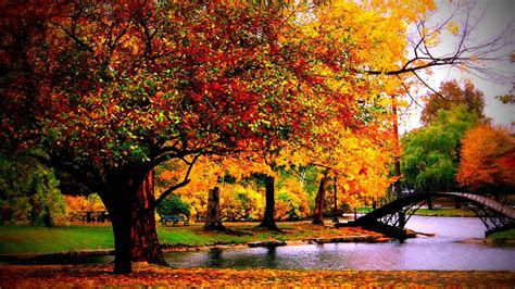 1080p Fall Desktop Backgrounds Hd by Autumn Hd Wallpapers 1080p 76 Images