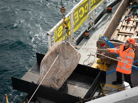 Greenpeace vows to carry on dropping boulders on Dogger ...