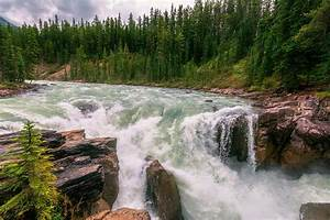 Lower Sunwapta Falls Jasper Alberta II Photograph by Joan