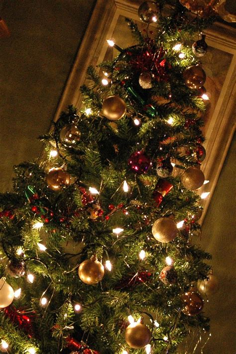 what your christmas tree says about you thought catalog
