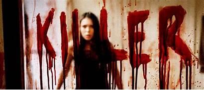 Vampire Diaries Gilbert Dobrev Nina Elena Katherine