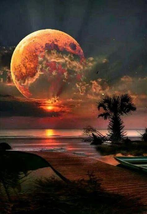 image result  moon  stars beautiful moon