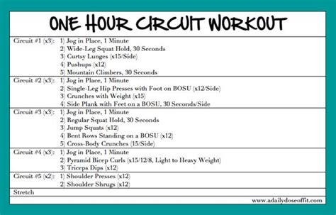 Daily Dose Fit One Hour Circuit Workout Motivation
