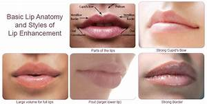 temporary lip injections cost