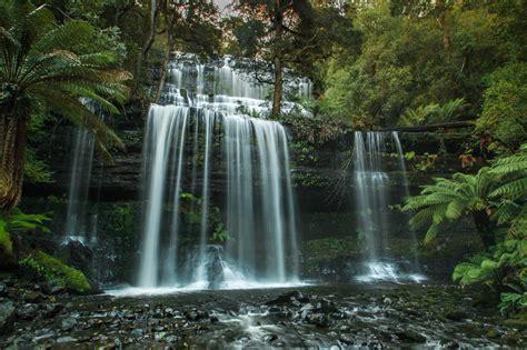 waterfalls  tasmania russellfalls