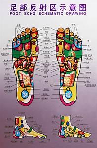 About Reflexology  U2013 Luv Yu Foot Spa