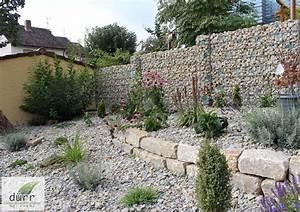Gabionen Gartengestaltung Bilder : luxus gabionen gartengestaltung bilder ideen ~ Whattoseeinmadrid.com Haus und Dekorationen