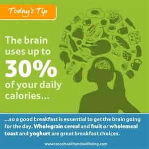Brain Health Wellness Tips