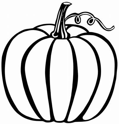 Fruits Vegetables Coloring Pages Simple Children