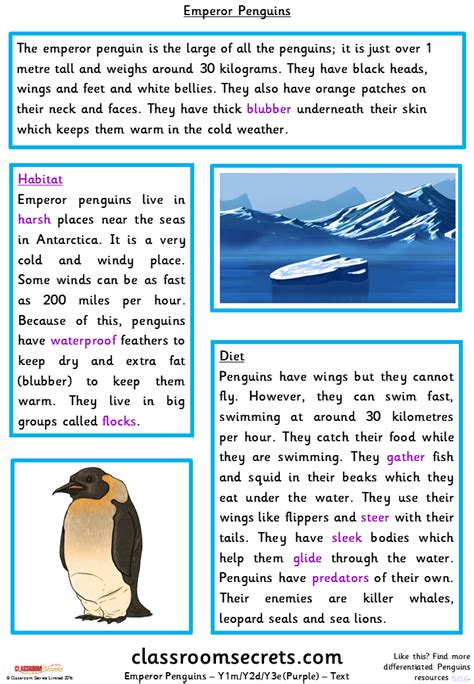 emperor penguins ymydye guided reading pack