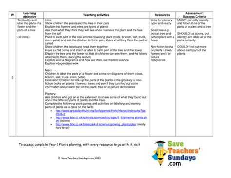 Parts Of A Plant & A Tree Lesson Plan & Worksheet By
