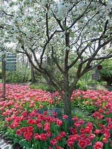 Botanical, Garden, Education, U0026, Events