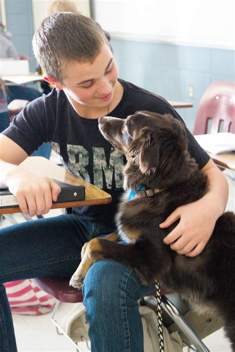 rose bud student brings service dog  school  monitor