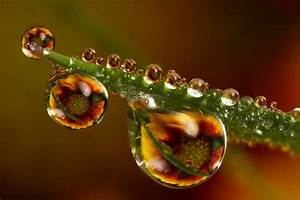 Mind-Boggling Water Drop Reflections (13 photos) - My ...