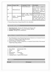 puter Science Engineering Resumes For Freshers Resume