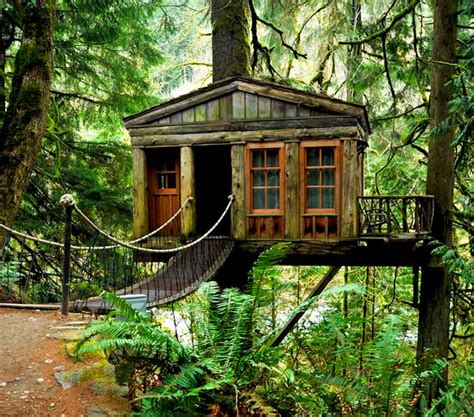 treehouse hotel washington best 25 treehouse seattle ideas on pinterest house tree plants vacation and treehouse vacations