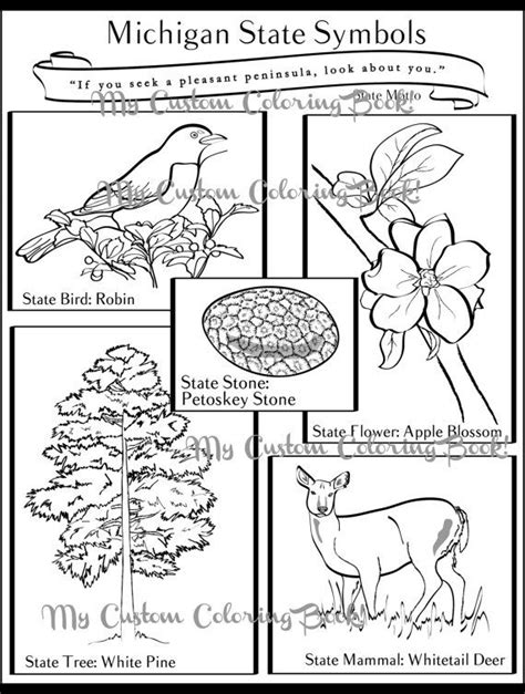 Have fun while learning about Michigan State Symbols! Great for kids and classrooms learning