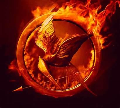 Mockingjay Hunger Games Catching