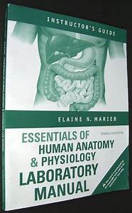 Essentials Of Human Anatomy And Physiology Textbooks