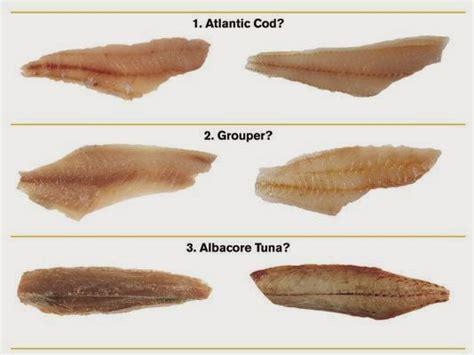 fish kosher restaurants seafood common destination poster sold fishy fakes