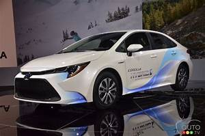Toyota Corolla Hybrid To Be As Frugal On Gas As The Prius