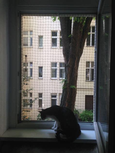Fenster Sichtschutz Katze by Katzen Fenster Balkon Selber Bauen Ostseesuche
