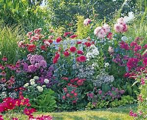 Comment Planter Un Camélia : bouturer les bulbes c est facile d tente jardin ~ Melissatoandfro.com Idées de Décoration