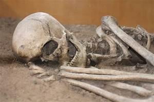 Human Bones He Is Sleeping For Ever