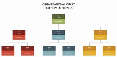 Chart Organizational Employee Creately Employees Organization Into