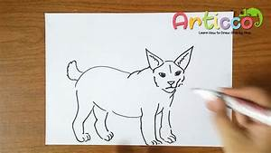 How To Draw Bobcat Step By Step For Kids Youtube