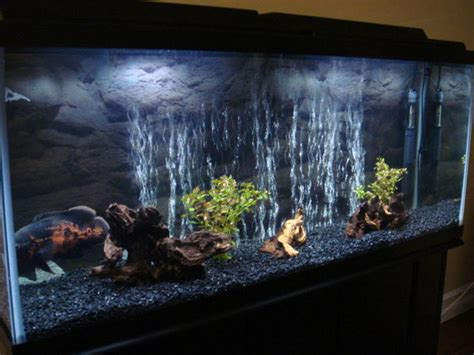 ydas freshwater tanks photo id  full