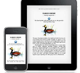 how to listen to kindle books on iphone adds embedded and audio capability to