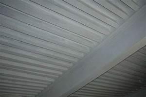 Enduire Un Plafond Au Rouleau : comment enduire un plafond ~ Farleysfitness.com Idées de Décoration