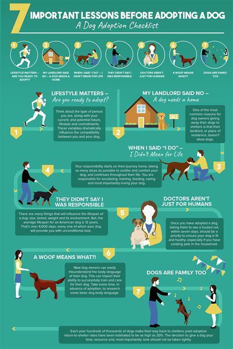 dog shelters speak