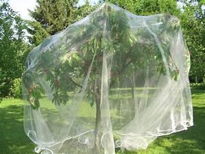 Filet Pour Arbre Fruitier : filet pour arbre fruitier mailles 4 x 8 mm 40 g m ~ Melissatoandfro.com Idées de Décoration