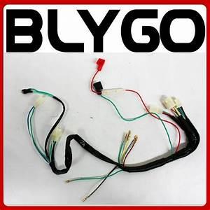 Wire Wiring Harness Loom   Light Wire 110cc 125cc 140cc