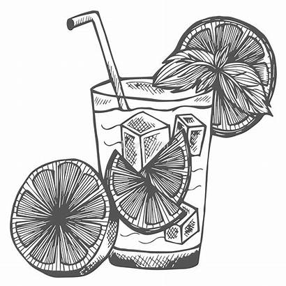 Alcohol Drawing Cocktail Sketch Caipirinha Getdrawings