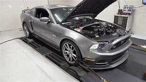 2014 Ford Mustang GT Procharger Dyno Pull 710 hp - YouTube