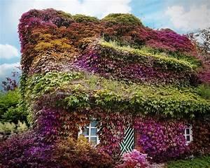 Immergrüne Pflanzen Winterhart : the house foto bild landschaft r ckkehr der natur ~ A.2002-acura-tl-radio.info Haus und Dekorationen