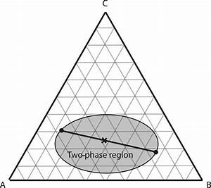 An Isothermal Slice Of A Fictitious Ternary Phase Diagram
