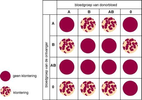Bloedgroep laten bepalen