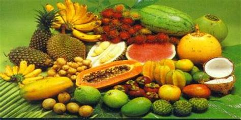 tropical fruits  philippines assignment point