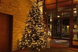 Weihnachtsbaum Kuenstlich Wie Echt : k nstliche weihnachtsb ume ohne beleuchtung ~ Michelbontemps.com Haus und Dekorationen