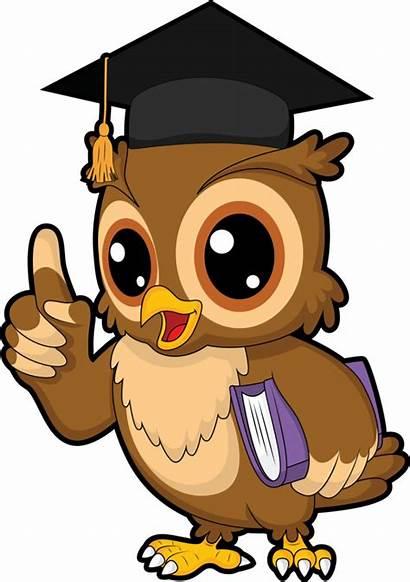 Owl Science Clipart Wise Study Mathematics Bird