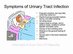 Urinary Tract Infections  A Collection Of Ideas To Try